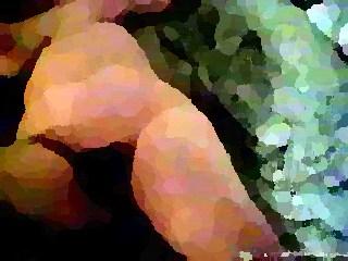 black bbw fat bbbw sbbw bbws porn plumper fluffy cumshots cumshot chubby clip